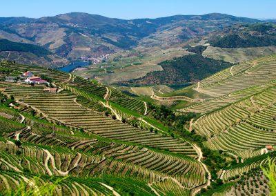 La vallée du Duro