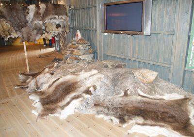 Peaux de rennes