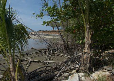 Cayenne : Pointe des Amandiers